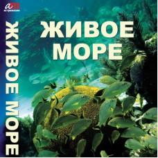 Живое море. DVD